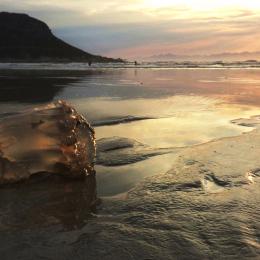 FHBeach -  at dawn South Africa Cape Town Fish Hoek Local Area