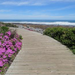 Kommetjie - Boardwalk - JRG