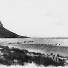FHV 02 409 - 1916