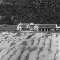 FHV 01 134 - 1919 - The Homestead