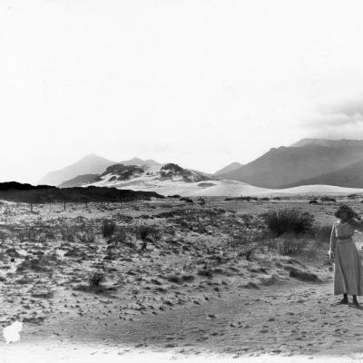 FHV  02 397 - 1918